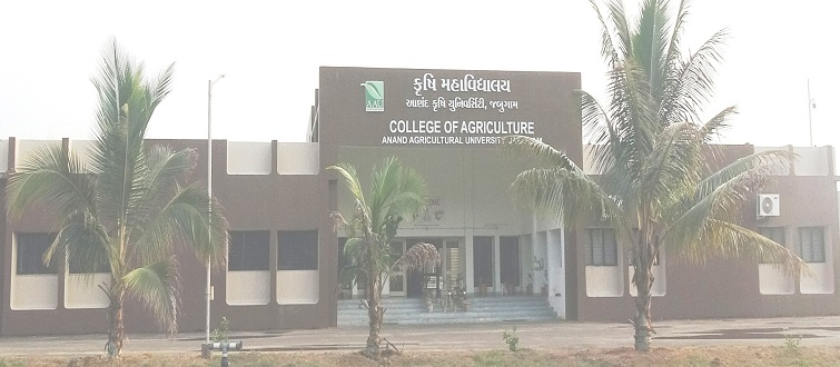 College of Agriculture, Jabugam