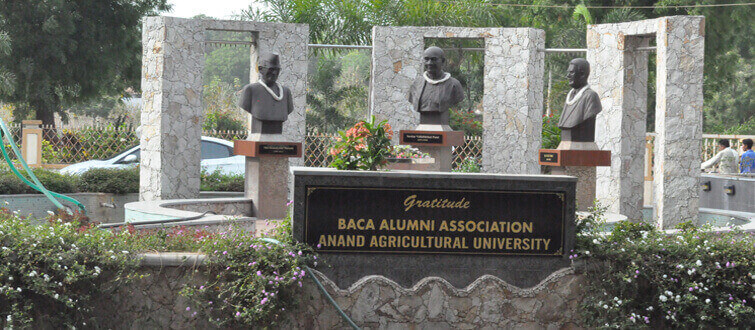 Statues of Sardar Patel, K M Munshi, M D Patel at AAU by Alumni Association of B A College of Agriculture, Anand.
